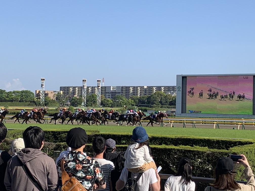 場 東京 天気 競馬